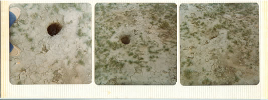 Uncapped Drill Holes at the Keota Site (Example 3)